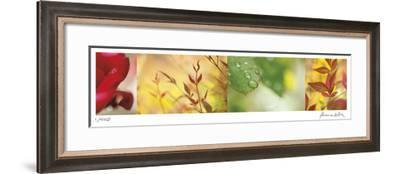 Garden of Contrast-Florence Delva-Framed Giclee Print