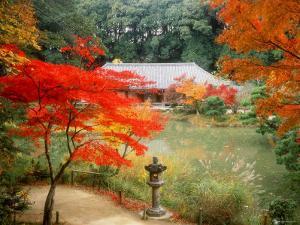 Garden of Joruriji Temple