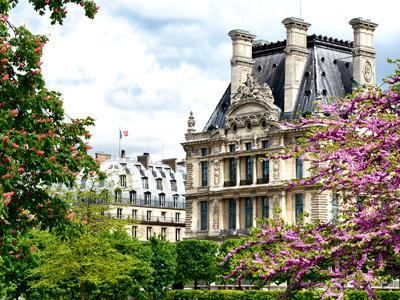 https://imgc.artprintimages.com/img/print/garden-of-the-tuileries-the-louvre-paris-france_u-l-q1gdsf40.jpg?p=0