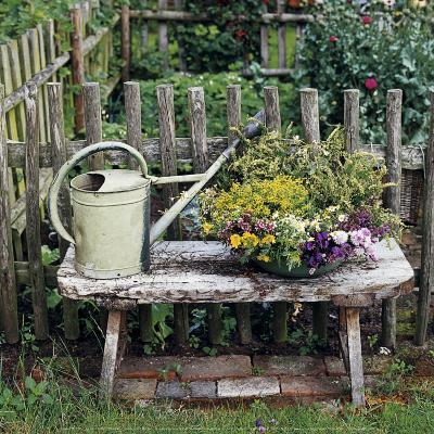 Garden of Yesteryear-Janne Peters-Art Print
