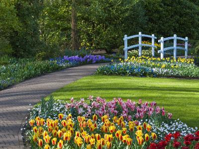 Garden Path Thru Spring Flowerbeds with White Bridge-Anna Miller-Photographic Print