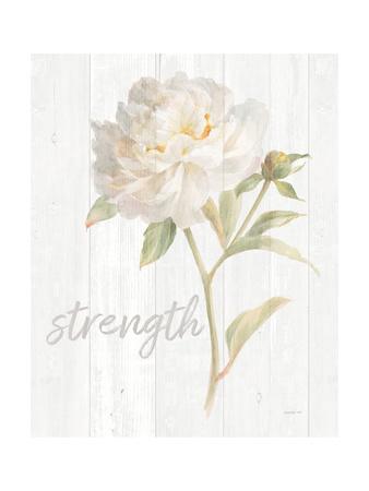 https://imgc.artprintimages.com/img/print/garden-peony-on-wood-strength_u-l-q1bueds0.jpg?p=0
