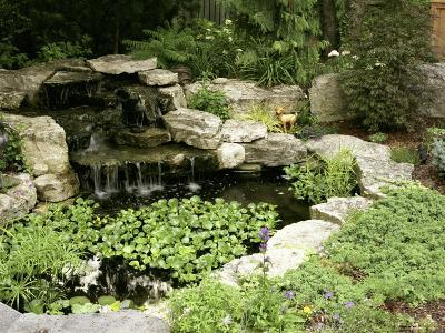 Garden Pond with Waterfall--Photographic Print