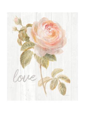 https://imgc.artprintimages.com/img/print/garden-rose-on-wood-love_u-l-q1buepo0.jpg?p=0