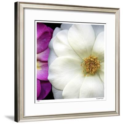 Garden Roses-Pip Bloomfield-Framed Giclee Print