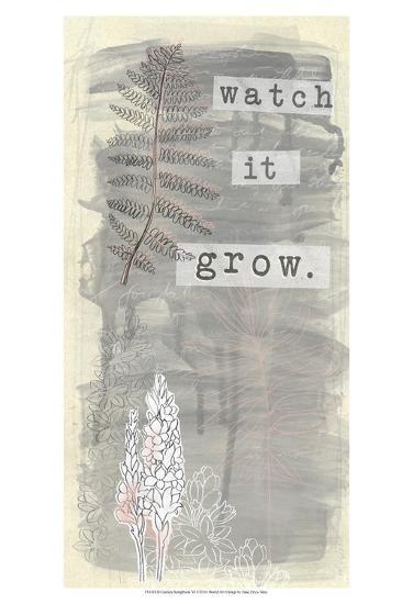 Garden Scrapbook VI-June Erica Vess-Art Print