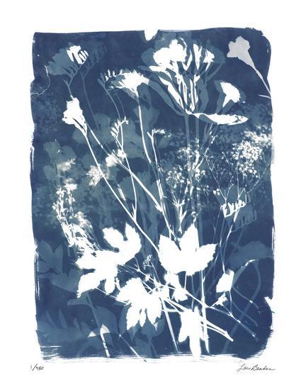 Garden Shadow 2-Lois Bender-Giclee Print