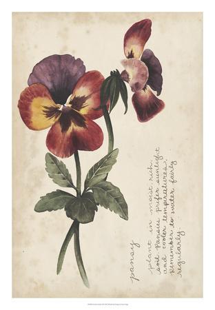 https://imgc.artprintimages.com/img/print/garden-studies-ii_u-l-f8hsll0.jpg?p=0