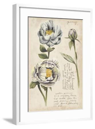 Garden Studies IV-Grace Popp-Framed Giclee Print