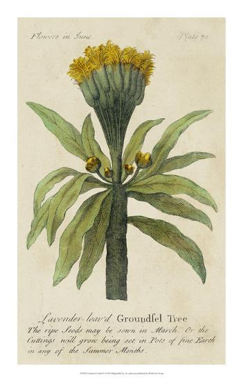 Gardener's Guide IV--Giclee Print
