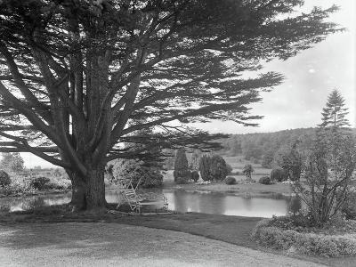 Gardens at Brinsop Court-Frederick Henry Evans-Photographic Print