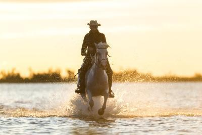 Gardian, Cowboy and Horseman of the Camargue, Camargue, France-Peter Adams-Photographic Print