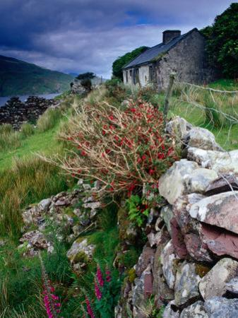 Abandoned Cottage on the Famine Relief Road in Killary Harbour, Connemara, Connaught, Ireland