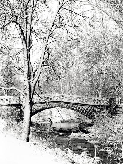 Garfield Park, Indianapolis City Park, Indiana, Usa-Anna Miller-Photographic Print