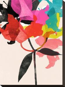 Lily 5 by Garima Dhawan