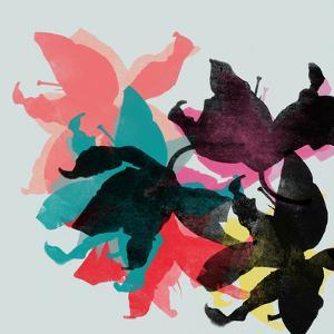 Lily 8 by Garima Dhawan