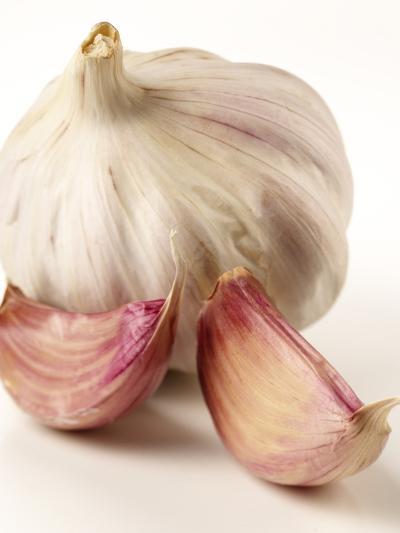 Garlic and Garlic Cloves- Joff Lee Studios-Photographic Print