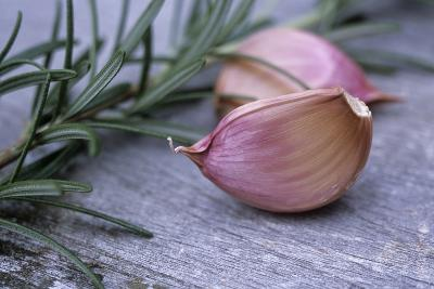 Garlic And Rosemary-Maxine Adcock-Photographic Print