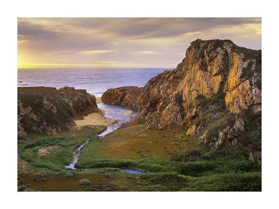 Garrapata Creek flowing into the Pacific Ocean, Garrapata State Beach, Big Sur, California-Tim Fitzharris-Art Print