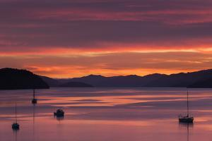 Dawn over the Calm Waters of Queen Charlotte Sound, South Island, New Zealand, Pacific by Garry Ridsdale