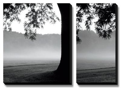 Fog in the Park I by Gary Bydlo