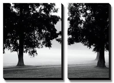 Fog in the Park II by Gary Bydlo