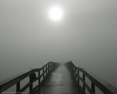 Into the Fog I by Gary Bydlo