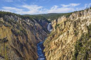 Artists Point Looking Towards Lower Falls, Grand Canyon, Yellowstone National Park, Wyoming, U.S.A. by Gary Cook