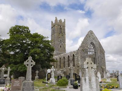 Claregalway Franciscan Friary, Near Galway, County Galway, Connacht, Republic of Ireland by Gary Cook