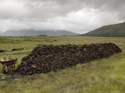 Cut Peat Stacked up for Winter, Connemara, County Galway, Connacht, Republic of Ireland by Gary Cook