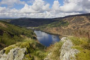 Glen Trool, Seen from White Bennan, Dumfries and Galloway, Scotland, United Kingdom, Europe by Gary Cook