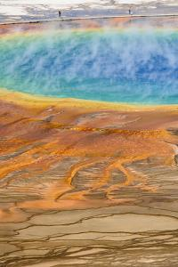 Grand Prismatic Spring, Midway Geyser Basin, Yellowstone National Park, Wyoming, U.S.A. by Gary Cook