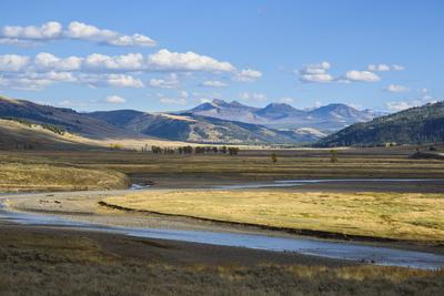 Lamar Valley, Yellowstone National Park, Wyoming, United States of America, North America