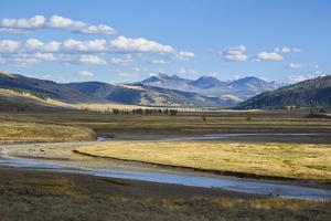 Lamar Valley, Yellowstone National Park, Wyoming, United States of America, North America by Gary Cook