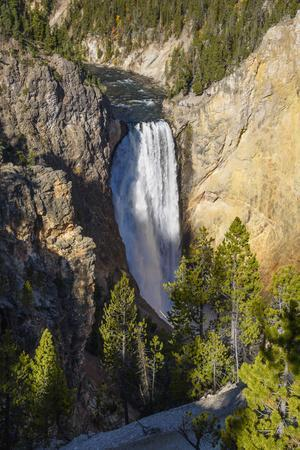 Lower Falls, Yellowstone River, Yellowstone National Park, Wyoming, United States of America