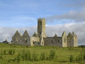 Ross Errilly Franciscan Friary, Near Headford, County Galway, Connacht, Republic of Ireland by Gary Cook