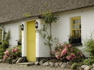 Thatched Cottages, Ballyvaughan, County Clare, Munster, Republic of Ireland by Gary Cook