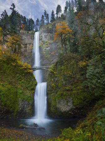Multnomah Falls, Columbia Gorge, Oregon, USA