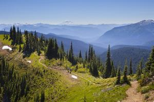 USA, Washington. Backpackers on Cowlitz Divide of Wonderland Trail by Gary Luhm