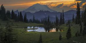 Washington, Mt. Rainer National Park by Gary Luhm