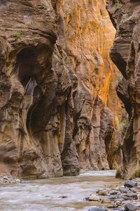 Virgin River Narrows, Zion National Park, Utah, United States of America, North America by Gary