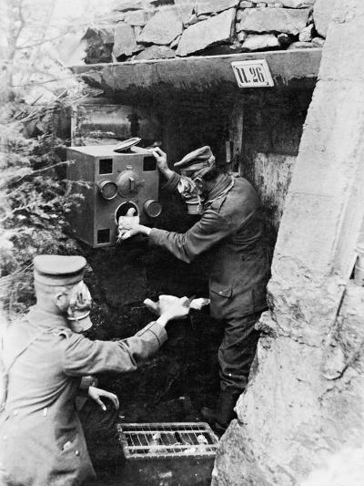Gas Protection Chamber for Carrier Pigeons Used in German Shelters at the Front, 1917--Photographic Print