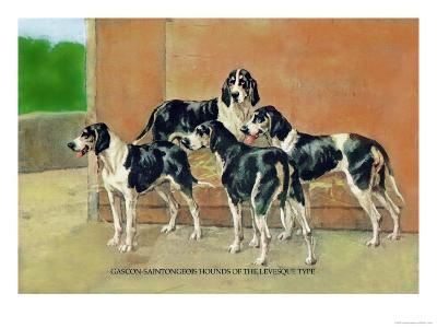 Gascon-Saintongeois Hounds of the Levesque Type-Thomas Ivester Llyod-Art Print