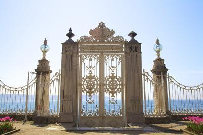 Gate to the Bosphorus, Dolmabahce Palace, Istanbul, Turkey, Europe-Neil Farrin-Photographic Print