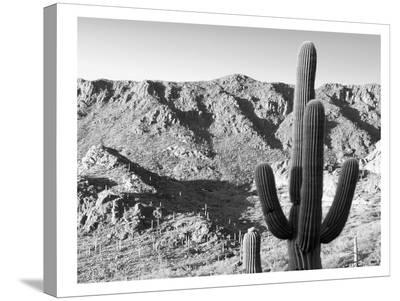 Gates Pass Bw-Murray Bolesta-Stretched Canvas Print