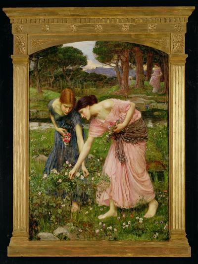 'Gather Ye Rosebuds While Ye May', 1909-John William Waterhouse-Giclee Print