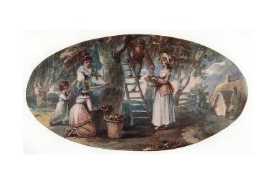 Gathering Fruit, Late 18th Century-William Hamilton-Giclee Print