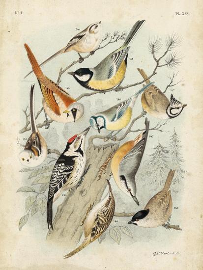 Gathering of Birds II-G^ Lubbert-Art Print