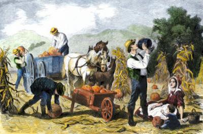 Gathering Pumpkins, an October Scene in New England, c.1860