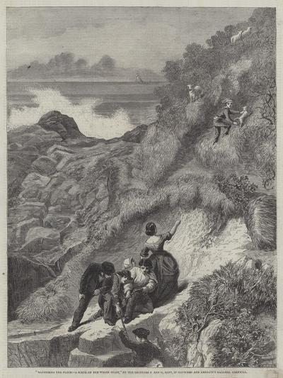 Gathering the Flocks, a Scene on the Welsh Coast-James Sant-Giclee Print